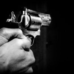 Gun - Rudy van der Veen
